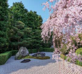 4月 妙心寺(京都) 庭の詩情 2022年カレンダーの画像